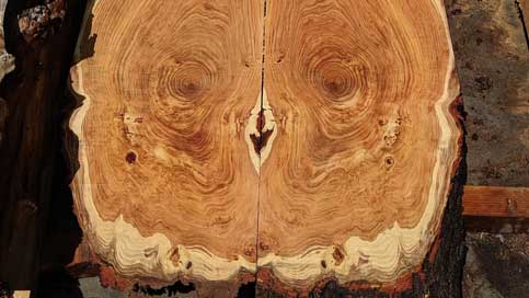 Book matched wood slabs